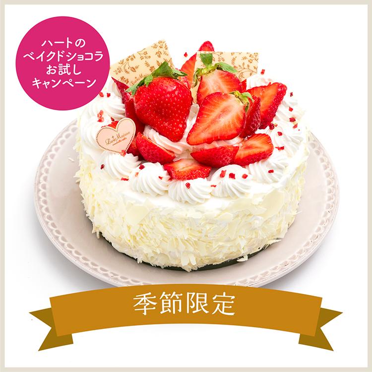 【特典付き】スカイベリーのショートケーキ